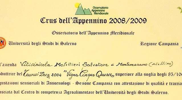 "Degustazioni al Crus dell'Appennino 2008/2009: 85/100 a Taurasi DOCG ""Vigna Cinque Querce"" 2004"