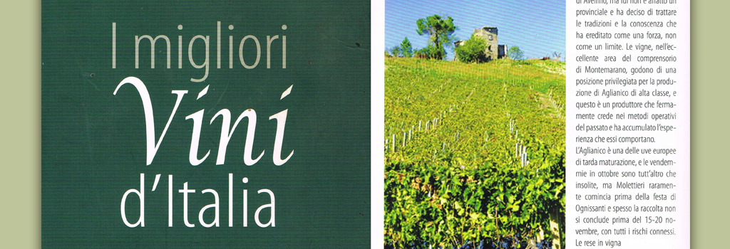 Danien Thomases – I migliori Vini d'Italia